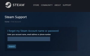 Recover Your Forgotten Steam Password