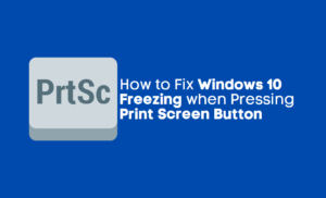 Windows 10 Freezing when Pressing Print Screen Button